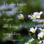 God Will Complete the Good Work  {No Matter What Monday}