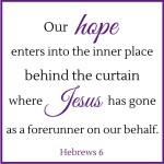 Our Hope Enters Behind the Curtain  {No Matter What Monday}