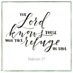 The Lord Knows Those Who Take Refuge in Him  {No Matter What Monday}
