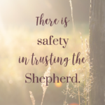 There is Safety in Trusting the Shepherd  {No Matter What Monday}