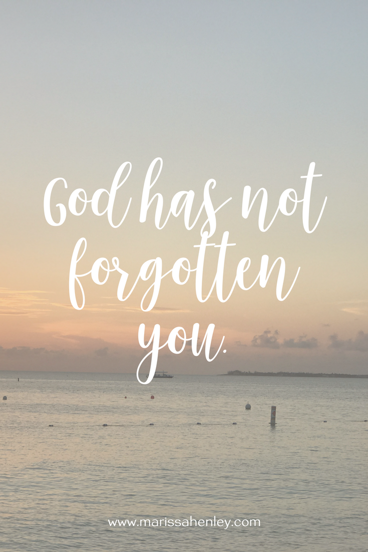 God has not forgotten you. Biblical encouragement, Scripture, and devotionals for women.
